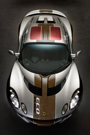 Lotus Hemp Car